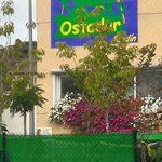 Ostadar Jardín oficina técnica y servicios integrales de jardinería